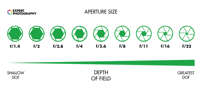 Diagram explaining depth of field and aperture sizes.