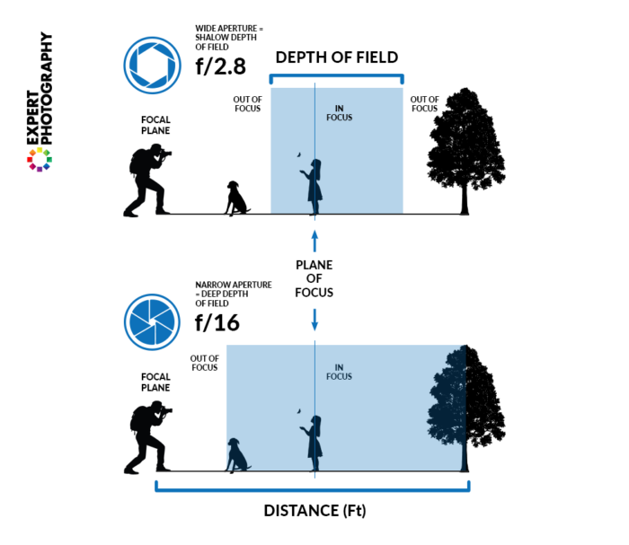 detailed diagram explaining how aperture affects depth of field