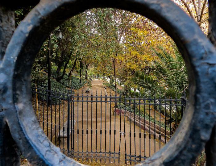 Foto de un parque visto a través de una parte circular de una puerta en primer plano como un marco dentro de un marco