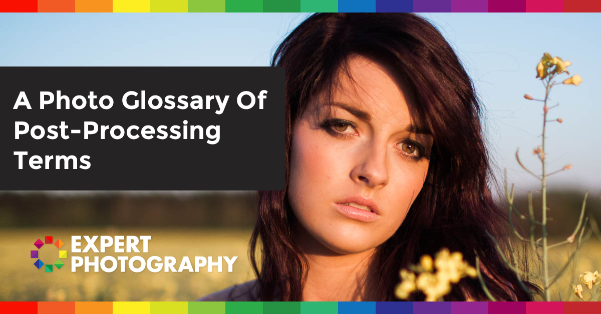 A Photo Glossary Of Post