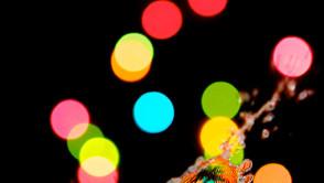 Portfolio RAW - December 12, 2014 - 248