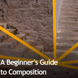 A Beginner's Guide to Composition