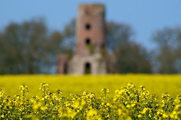 a blurry photo of a castle in a field of yellow flowers - f/stop scale