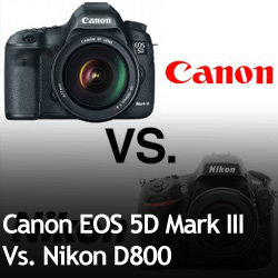 Canon EOS 5D Mark III Vs. Nikon D800
