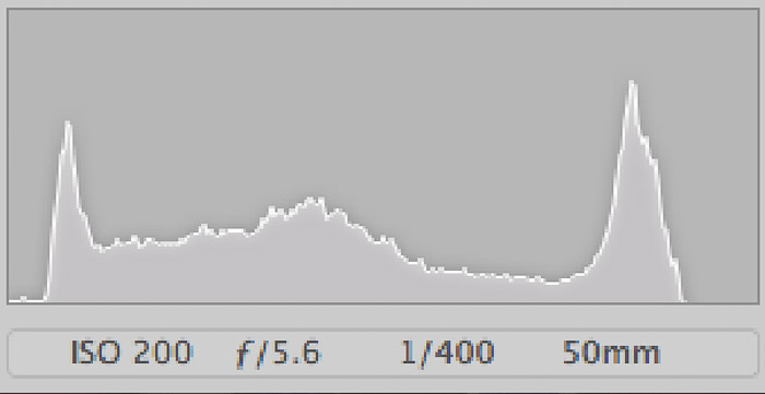 a histogram from a well exposed photo