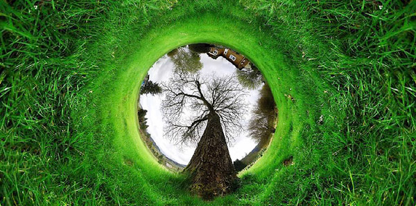 360 tunnel tree nature2 Trick Photography and Special Effects eBook Photos