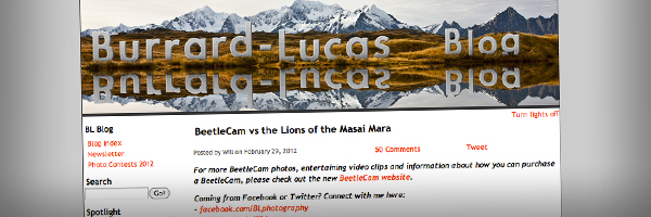 BeetleCam vs the Lions of the Masai Mara Top 50 Photography Posts 2012