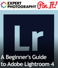 A Beginners Guide to Adobe Lightroom 4 A Beginner's Guide to Adobe Lightroom 4