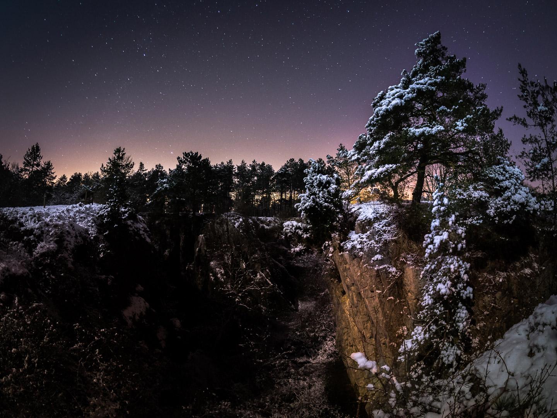 Night Landscape - Snowbound Forest