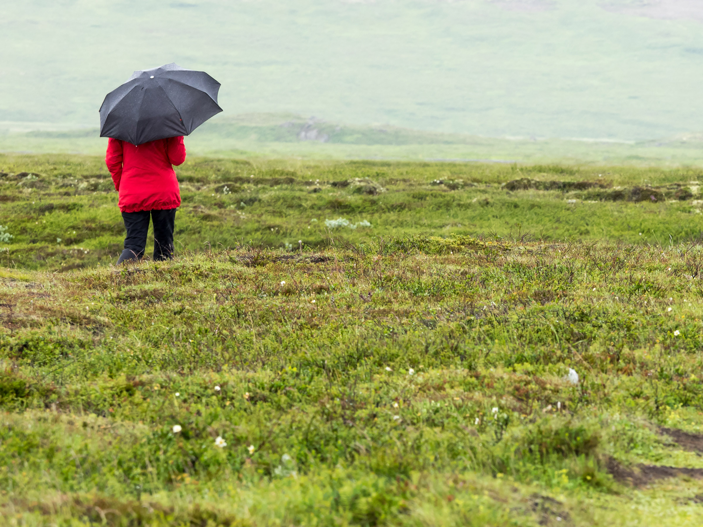 woman with umbrella in a field in Iceland