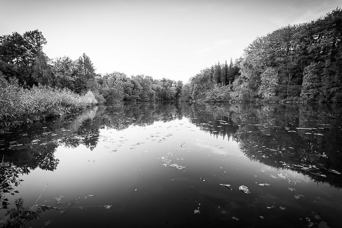 A black and white infrared photography shot of a pond in Belgium