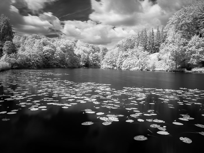 Black and white conversion of infrared photography