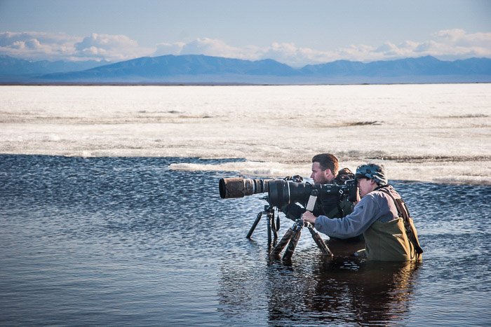 Two nature photographers setting up to photograph birds in water