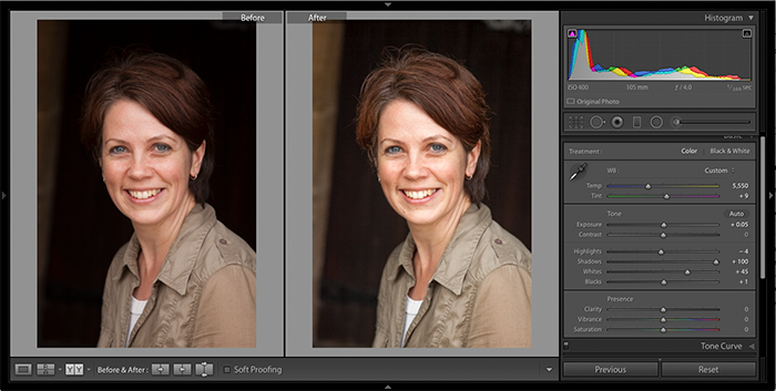 Example of global adjustments to white balance and tonal distribution in Adobe Lightroom