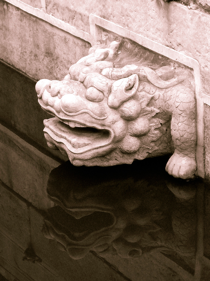 Black and white contrast demonstrated by dragon head sculpture and water