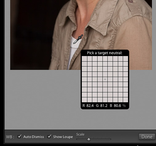 Close up screenshot of the Lightroom white balance tool