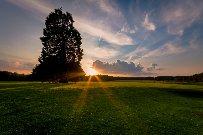 Filters for landscape photography: Good evening light in Brussels