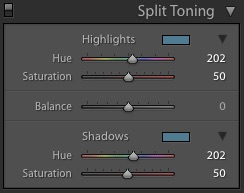 Example of Lightroom's Split Toning panel and settings for editing monochrome photography
