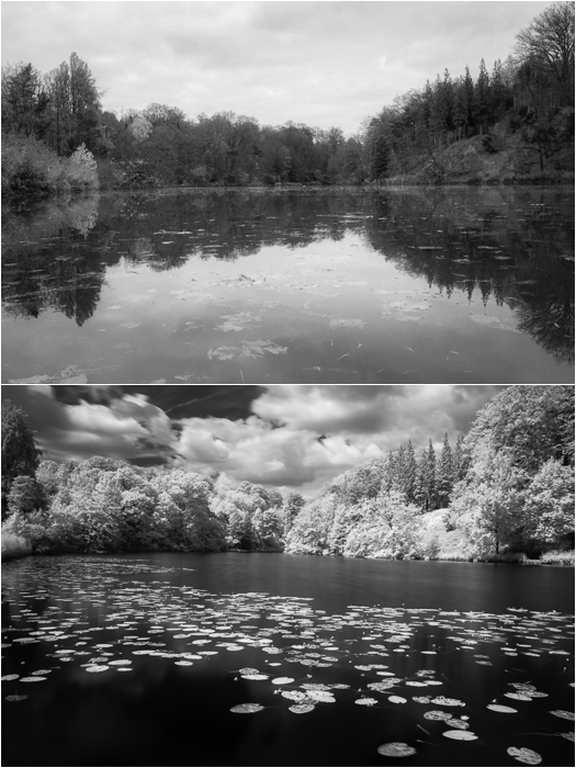 Filters for landscape photography: Sample photo comparing IR preset with physical IR filter effect