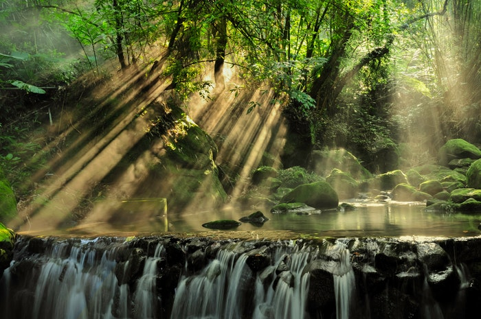 Light shining through the forest with a waterfall