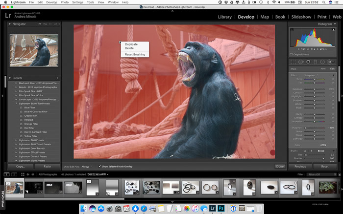 Blur the background in Lightroom: Duplicating a brush using right-click in Lightroom