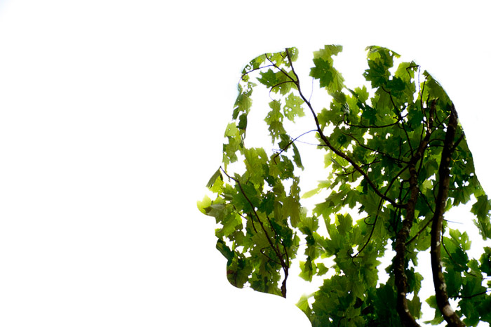 A double-exposure silhouette of a womans head and a leafy tree