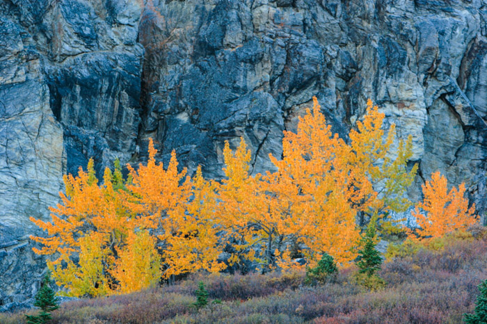 Photographing in the autumn shows off a very different colour range for landscape photography