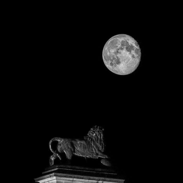A powerful image of a full moon over a statue of a lion