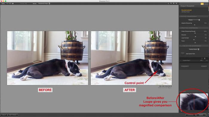 Una captura de pantalla del uso de Nik Collection - Sharpener Pro