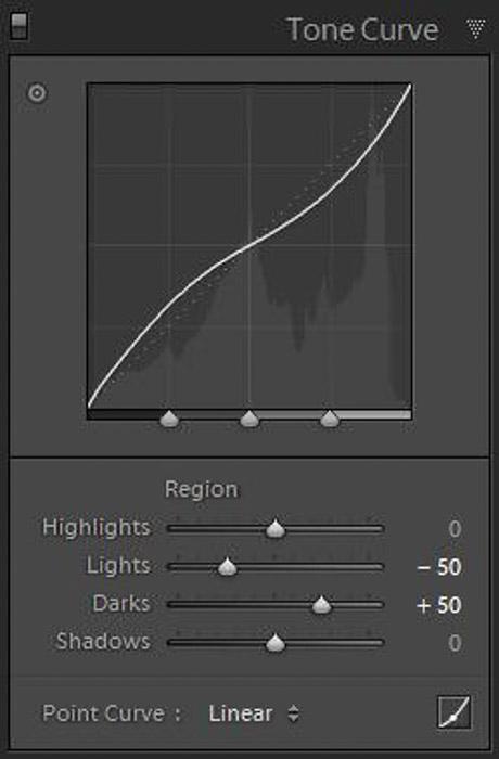 A screenshot of tone curve panel
