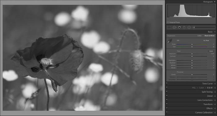 A screenshot showing How to Edit Black and White Images in Lightroom - Lightroom tutorials