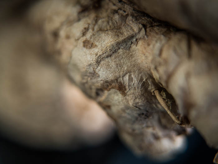 A macro image of ginger root