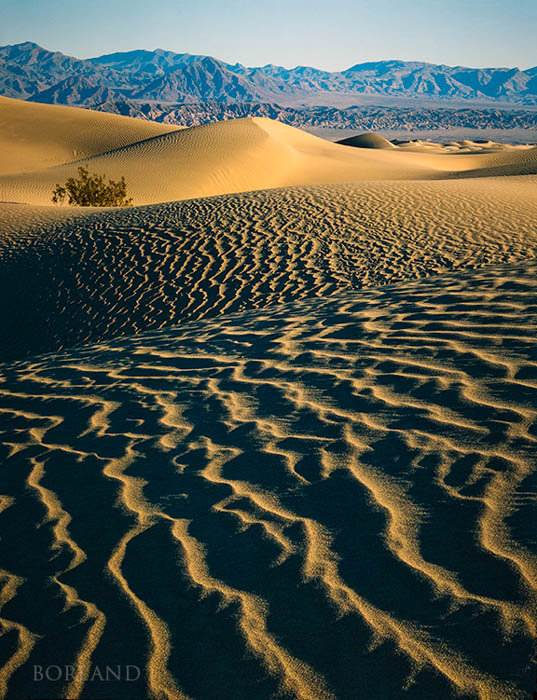 desert photography showing lines in the foreground, dunes and mountains in the background