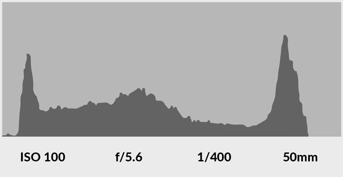 screenshot of a camera histogram