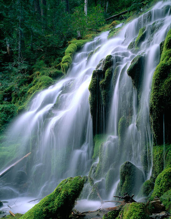 waterfall in a jungle - shot with a long shutter speed