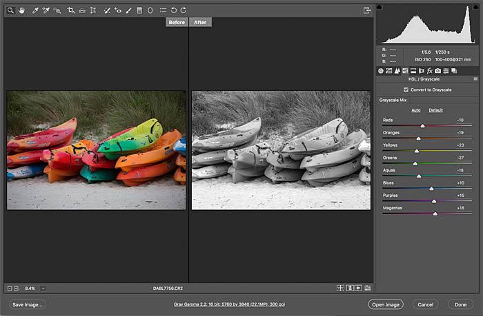 adobe camera raw panel in photoshop