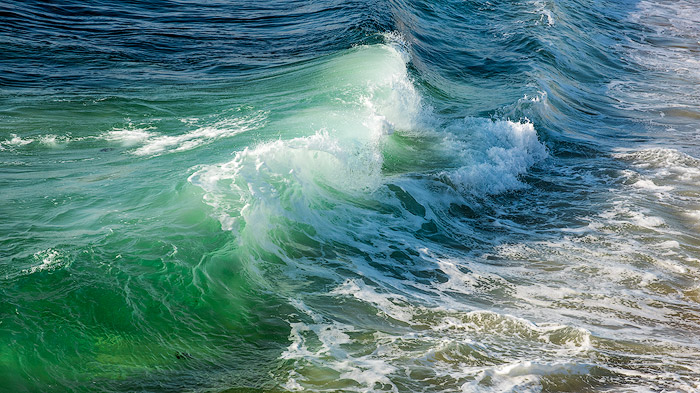 A fresh green wave in the sea