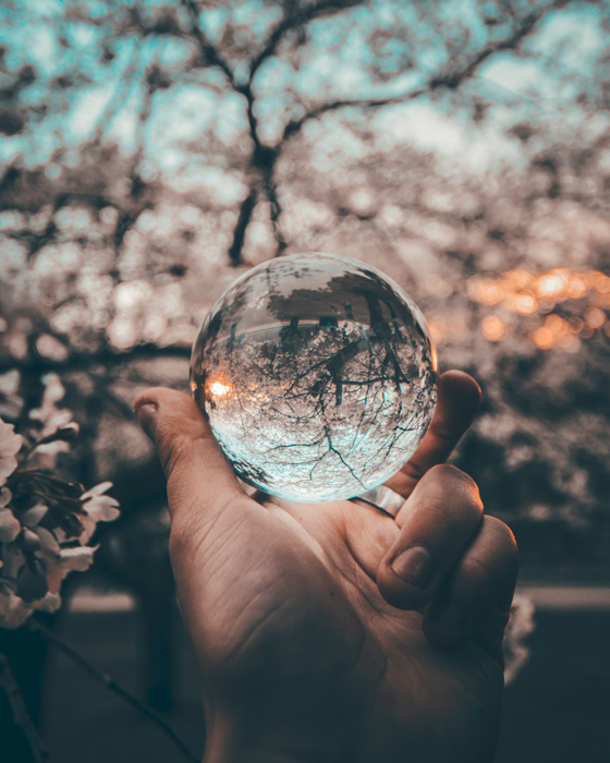 A hand holding a crystal ball against a blossom tree - lens distortion in photography