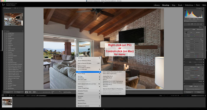 Using Nik software within Lightroom