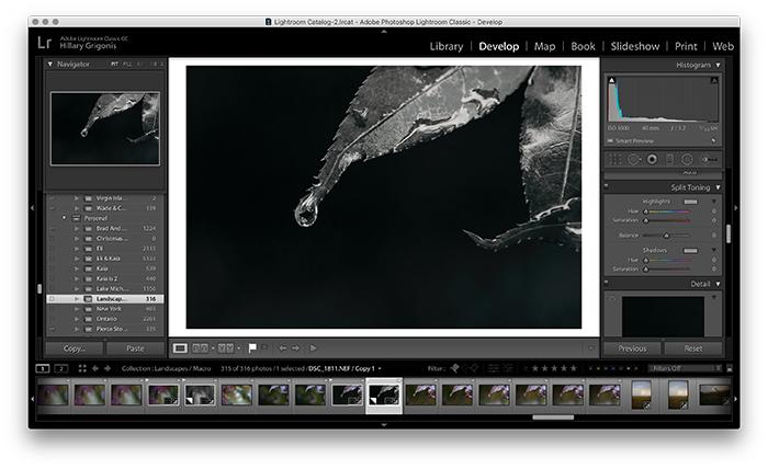 Una imagen de captura de pantalla de una hoja en Lightroom para el tono derramado