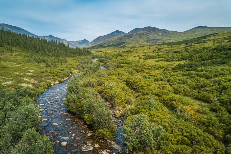 Aerial photography view of a forest of green trees, river and mountains taken by a drone