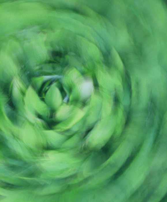 La aplicación de cámara de obturación lenta para su iPhone es ideal para fotografías abstractas, ya que puede concentrarse en el movimiento