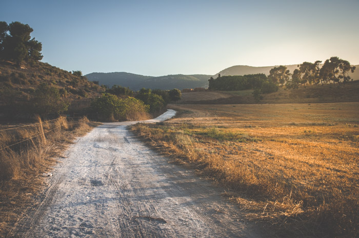 An image of a road in a calm countryside location at golden hour