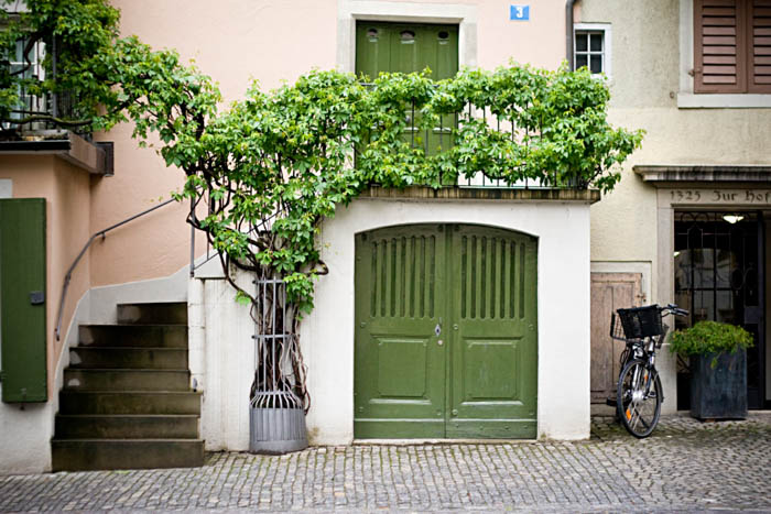 travel photography photo of a green door and plants