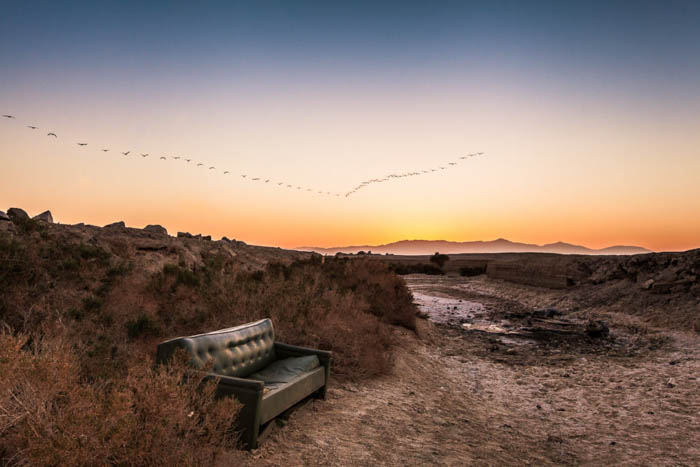 travel photography sunset with flock of birds in the background and an abandoned sofa in the foreground
