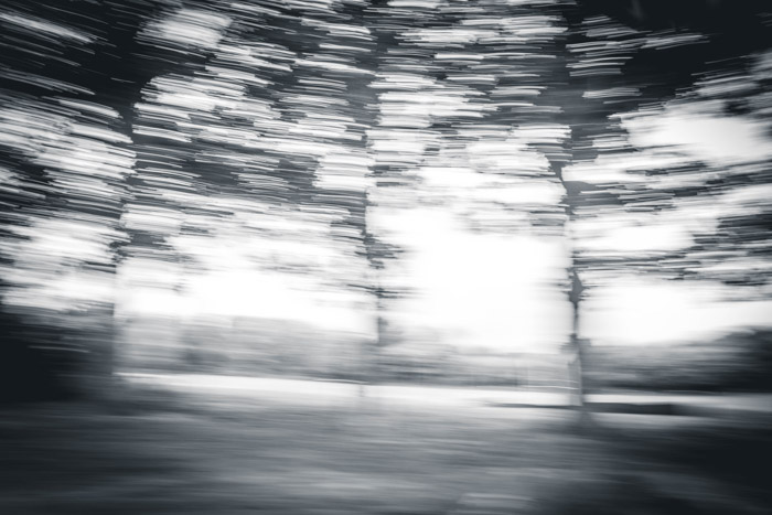 Panning your camera while photographing a landscape can add an interesting look to your abstract photography