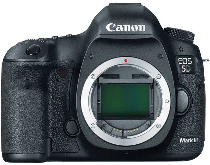 The Canon 5D Mark range are great DSLRs for wedding photography