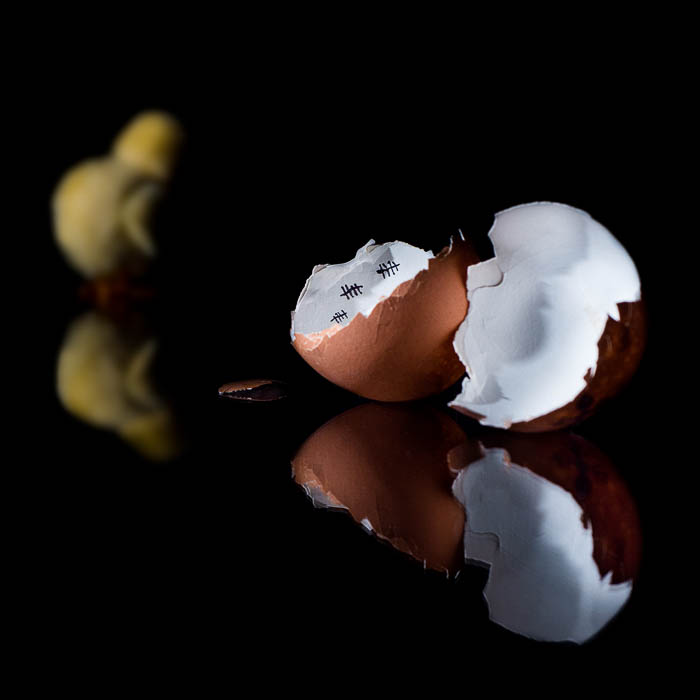 Still life photo with a cracked egg and a chicken