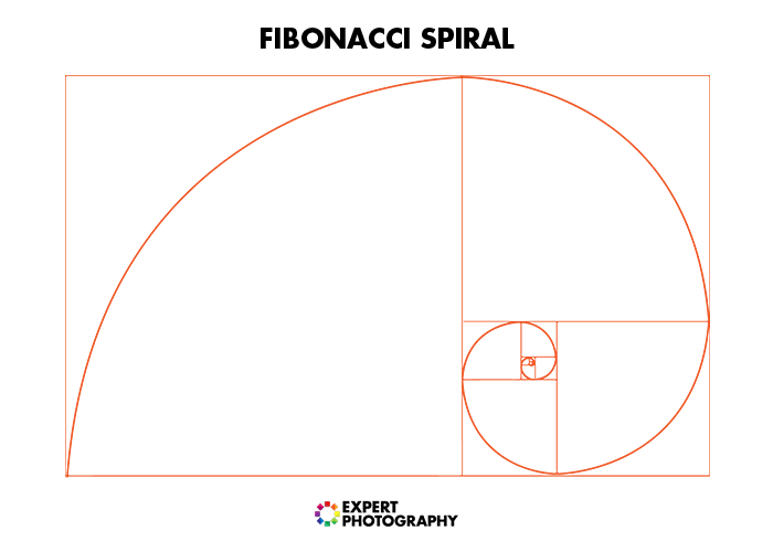 a diagram of the fibonacci spiral for food photography composition
