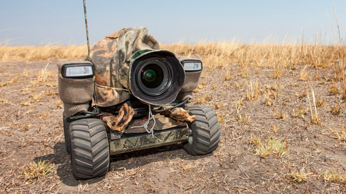 Robots offer a great vantage point where humans cant get close to for great wildlife photography
